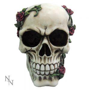 Rose From Beyond Skull
