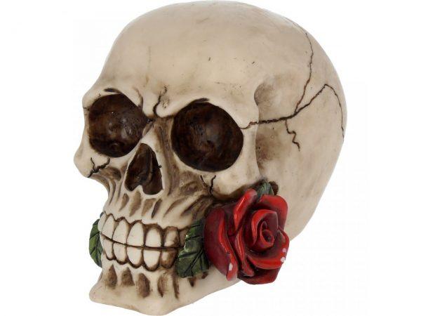 Rose from the Dead Skull Figure