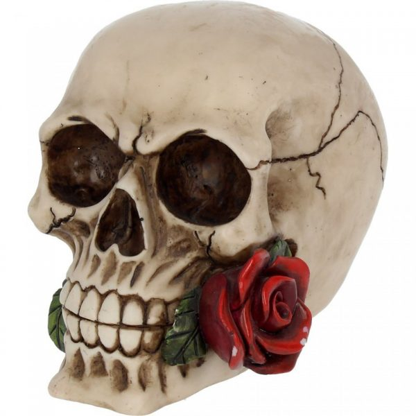 Rose from the Dead Skull Figure
