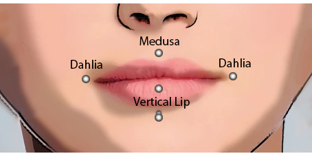 Available Facial Piercings