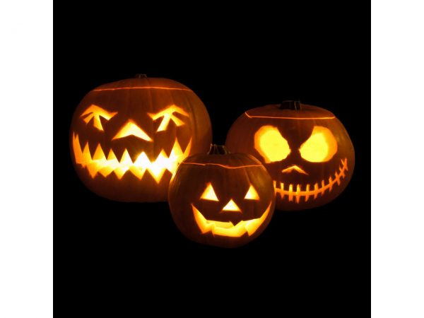 8 Hour Burn Tealights Nightlights Halloween Pumpkin
