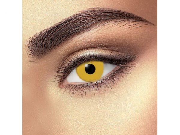 Funky Vision Eye Fusion Eye Accessories Demon Nun Daily