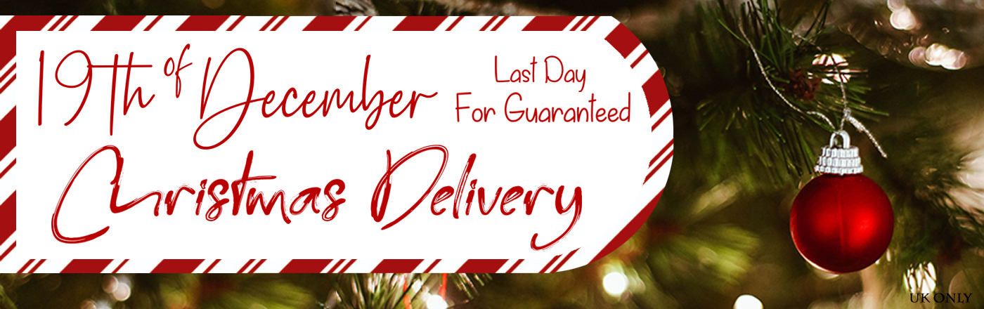 Last Day For Christmas Delivery