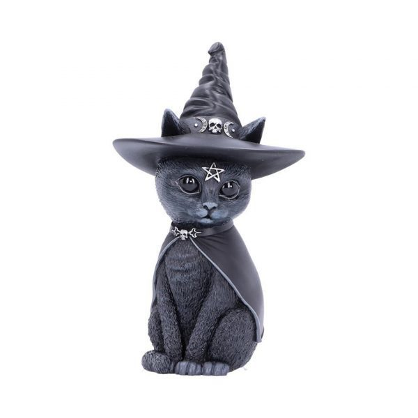 Purrah Cat Nemesis Now Witch Occult Witchcraft Familiar Spiritual Dark Spirits Figure Magic Pentagram Skull Cape Witches Hat
