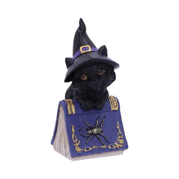 Pocus Cat Nemesis Now Grimoire Spell Book Occult Witchcraft Familiar Spiritual Dark Spirits Figure Magic