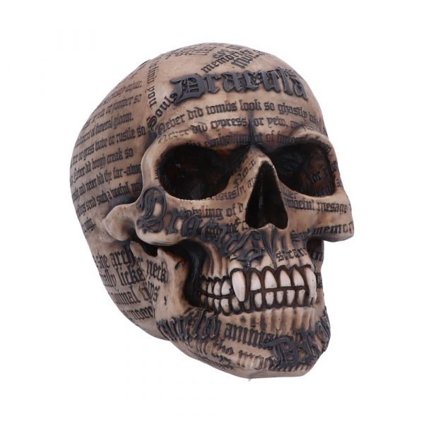 Draculas Tale Skull